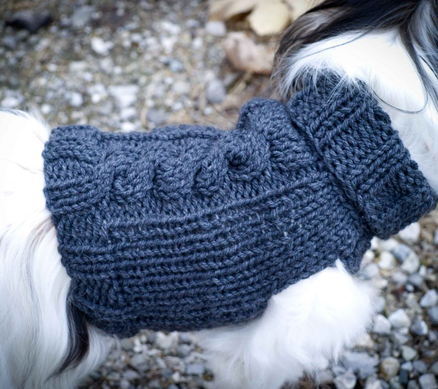 hundepullover stricken